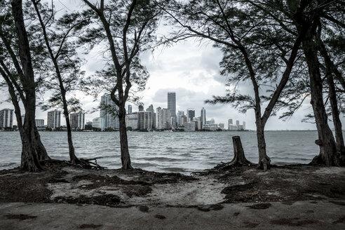 USA, Miami, view from Key Biscayne to Miami skyline - CHPF000218