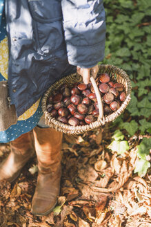 Girl carrying basket with chestnuts - ASCF000487