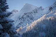 Austria, Berchtesgaden Alps, Hoher Goell at sunrise - STCF000184