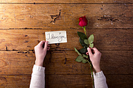 Woman's hands holding red rose and a notice 'I Love You' - HAPF000169