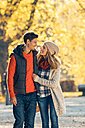Happy couple strolling in autumn in a park - CHAF001598
