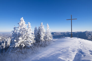 Germany, Upper Bavaria, Lenggries, spruces and summit cross on snow-covered Brauneck - SIEF006942