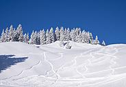 Germany, Upper Bavaria, Lenggries,  ski area at Brauneck with ski tracks on the slope - SIEF006948