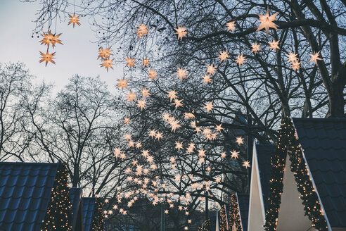 Decoration of paper stars on trees over roofs of the Christmas Market during dusk - MFF002693