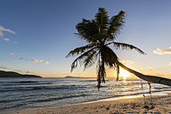 Seychelles, La Digue, Anse Fourmis, beach with palm and swing at sunset - FOF008401