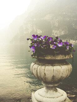 Italy, Trentino, Lake Garda at Riva del Garda - PUF000493