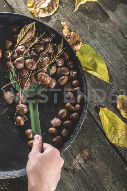 Hand of woman holding skimmer of  roasted sweet chestnuts - DEGF000651 - Deyan Georgiev/Westend61