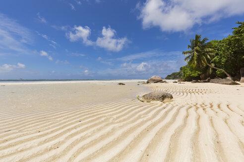 Seychelles, Indian Ocean, Mahe Island, beach Anse Royale, low tide - FOF008457