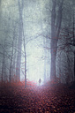 Germany, silhouette of man walking on forest track in fog - DWI000698