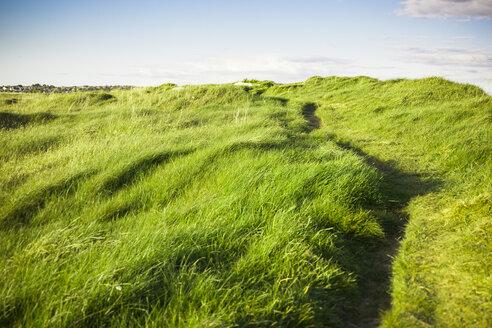 Ireland, Landscape in Connemara - GIOF000770