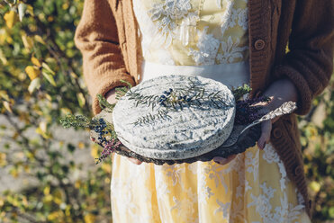 Woman's hands holding plate with decorated soft cheese - MJF001719
