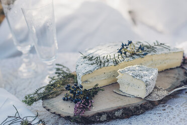 Sliced soft cheese on a tree pit - MJF001722