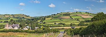 UK, Wales, Fields and meadows near Brecon - SHF001878