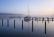 Germany, Fischland-Darss-Zingst, Prerow, Prerowstrom, Harbour in the morning - SIEF006962