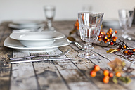 Empty wine glass on autumnal decorated table - SARF002573