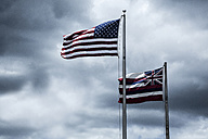 Flags of the USA and State Hawaii - NGF000301