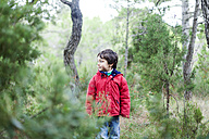 Little boy standing in the woods watching something - VABF000230