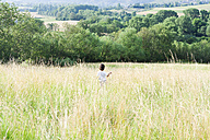 Back view of little boy on a meadow - VABF000242