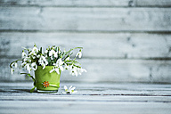 Glass with snowdrops - MAEF011362
