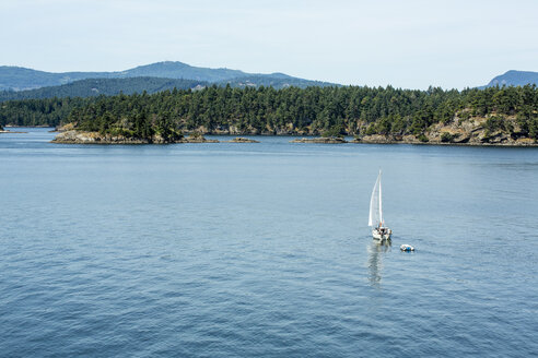 Canada, Vancouver Island, sailing boat on the coast of Victoria - NGF000308