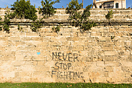 Spain, Palma de Mallorca, stone wall sprayed with the words 'Never Stop Fighting' - VI000461