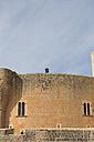 Spain, Palma de Mallorca, man standing on wall of Castell de Bellver using binocular - VIF000467