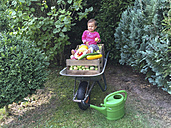 Little girl sitting on wheelbarrow with fruit and vegetable crates - DRF001694