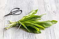 Bunch of ramson and scissors on wood - SARF002619