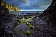 Spain, Tenerife, Landscape at the ocean - SIPF000238