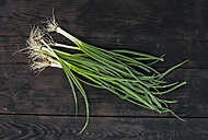 Spring onions on dark wood - DEGF000664