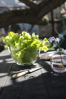 Glass bowl of leaf salad - DEGF000673