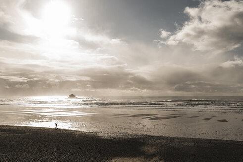 France, Bretagne, Finistere, Crozon peninsula, person walking on the beach - UUF006717