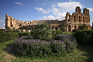 Tunisia, Colosseum in El Djem - DSGF001071