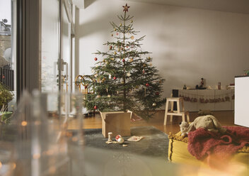 Decorated Christmas tree in family living room - MFF002793