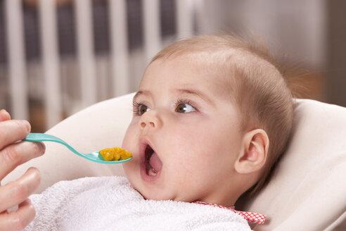Feeding baby - DSF000626