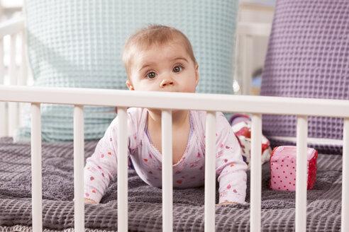 Baby in playpen - DSF000629