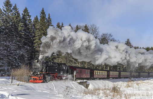Germany, Saxony-Anhalt, Harz National Park, Harz Narrow Gauge Railway in winter - PVCF000790