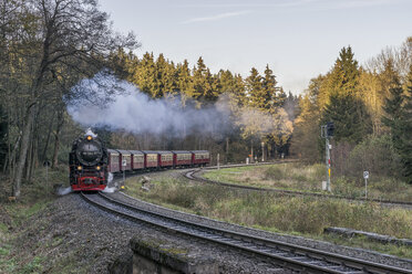 Germany, Saxony-Anhalt, Harz National Park, Harz Narrow Gauge Railway in autumn - PVCF000793