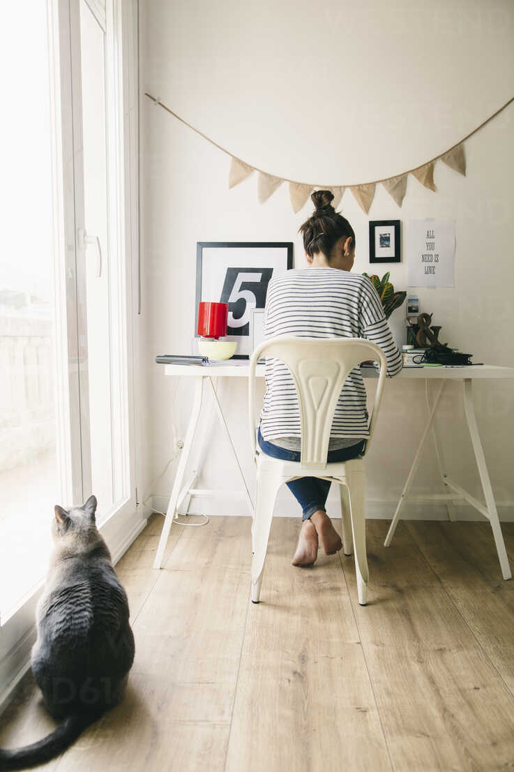 Woman working in home office with cat looking out of window - EBSF001271 - Bonninstudio/Westend61
