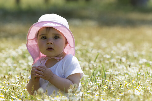 Baby girl sitting in flower meadow - DSF000637