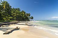 Dominican Republic, Peninsula Samana, Las Terrenas, Beach of El Portillo - PCF000251