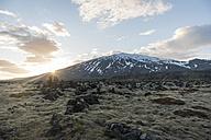 Iceland, Snaefellsjoekull, volcano - PAF001654