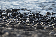 Spain, Tenerife, stones on the beach - SIPF000250