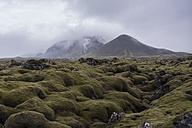 Iceland, volcanoes in fog - PAF001708