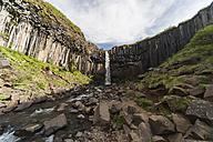 Iceland, Svartifoss waterfall - PAF001717