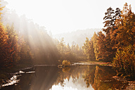 Germany, Rhineland Palatinate,  Ungeheuersee in autumnal  Palatinate Forest at haze - GWF004651