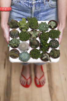 Hipster young woman with tray cacti and succulents - RTBF000007