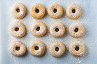 Doughnuts sprinkled with icing sugar - MYF001396