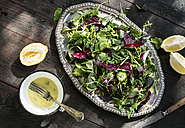 Spring salad of baby spinach, herbs, arugula and lettuce, dressing of yogurt, olive oil, honey and lemon - DEGF000706