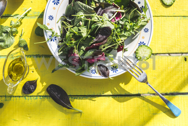 Spring salad of baby spinach, herbs, arugula and lettuce on plate, olive oil - DEGF000721 - Deyan Georgiev/Westend61